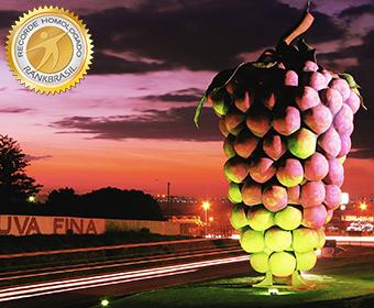 Maior cacho de uva