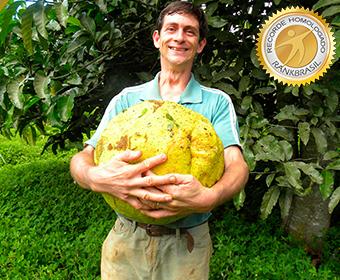 Maior coleção de plantas frutíferas