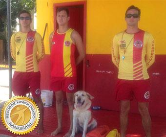 Primeiro cão guarda-vidas do Brasil