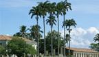Cidade baiana tem o maior PIB per capita do Brasil