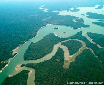 Brasil detém a segunda maior área florestal do planeta