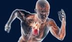 Ciência investiga o limite humano nos recordes esportivos