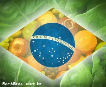Brasil é um dos maiores doadores de alimentos do mundo
