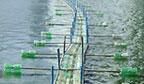 Maior ponte feita com garrafas pet