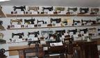 Maior coleção de máquinas de costura