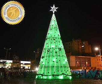 Maior árvore de Natal feita com garrafas pet