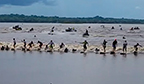 Maior número de surfistas na mesma pororoca