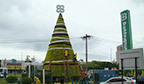 Maior árvore de Natal em mosaicultura